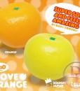Ibloom I LOVE ORANGE Series